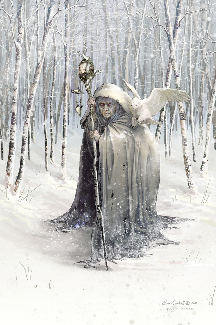 cailleach in snowy forest with owl.jpg