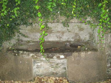 St urith's Well 1