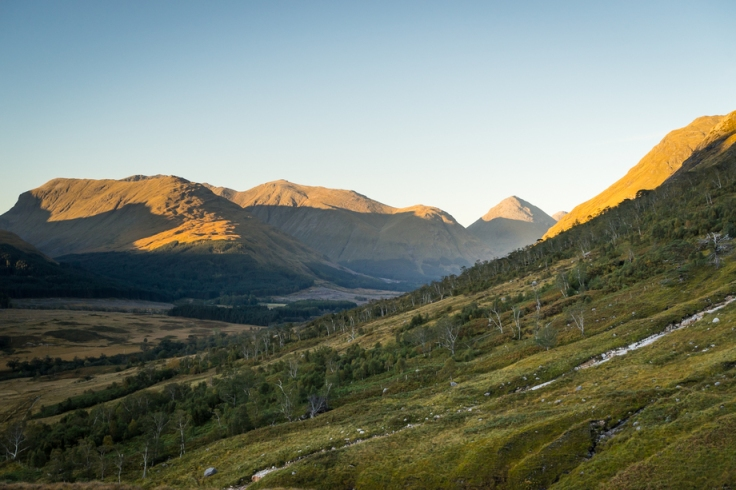 Glen_Etive__with_Allt_Mheuran_and_regeneration_in_the_foreground_detail JMT