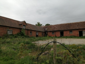 John's old farm buildings, full of barn owls